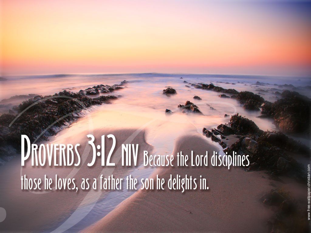 Proverbs 3:12 – The LORD Disciplines Those He Loves christian wallpaper free download. Use on PC, Mac, Android, iPhone or any device you like.