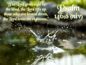 Psalm 146:8 – The Lord Loves The Righteous Wallpaper