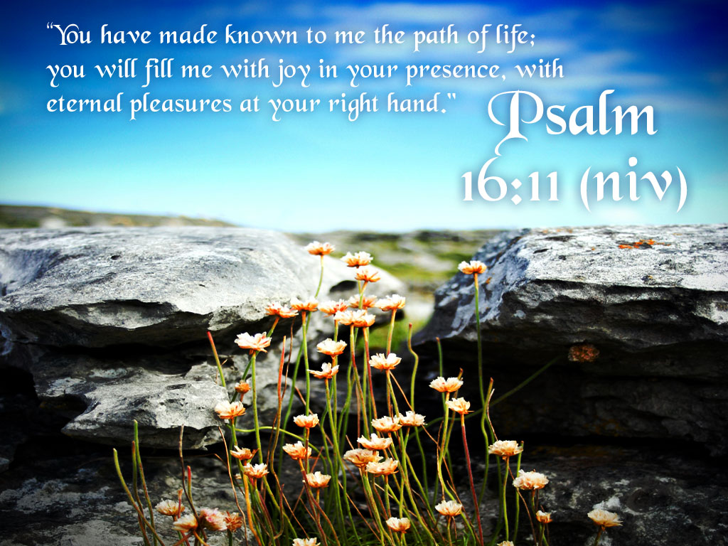 Psalm 16:11 – Path Of Life christian wallpaper free download. Use on PC, Mac, Android, iPhone or any device you like.