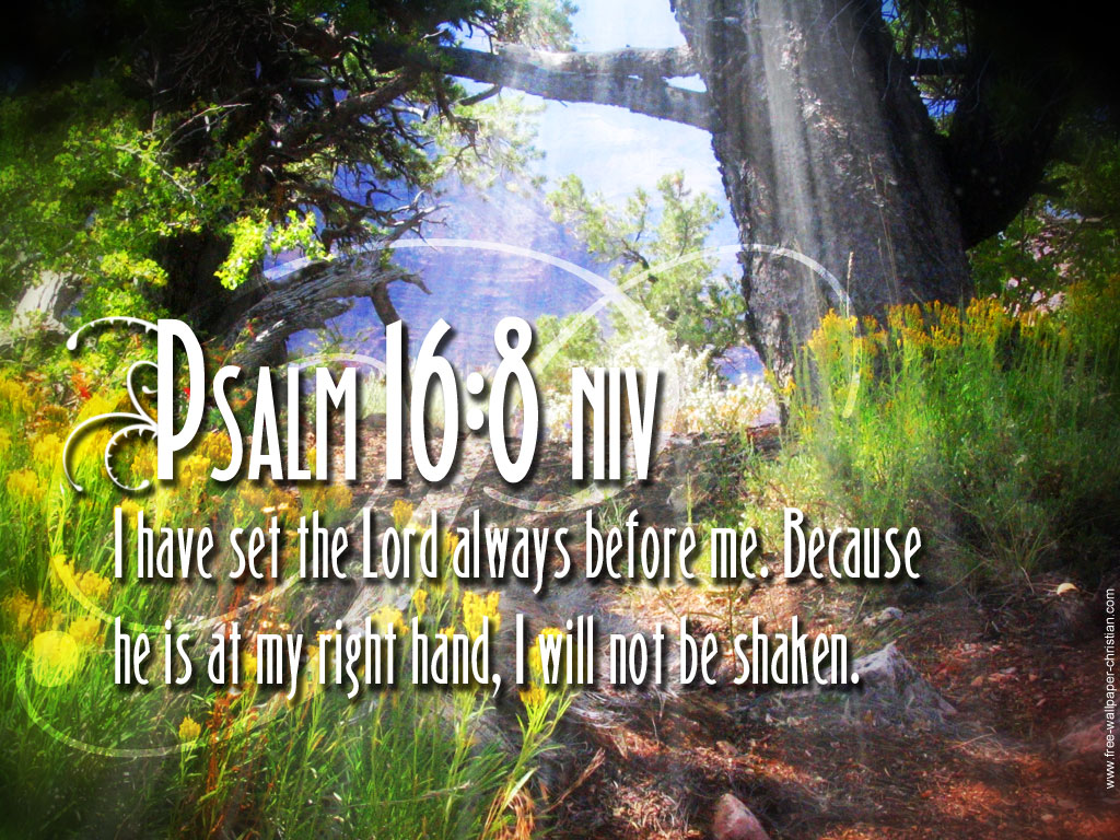 Psalm 16:8 – I Will Not Be Shaken christian wallpaper free download. Use on PC, Mac, Android, iPhone or any device you like.