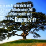 Revelation 2:7 – Tree of Life Wallpaper Christian Background