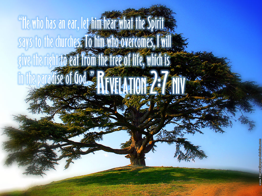 Revelation 2:7 – Tree of Life christian wallpaper free download. Use on PC, Mac, Android, iPhone or any device you like.