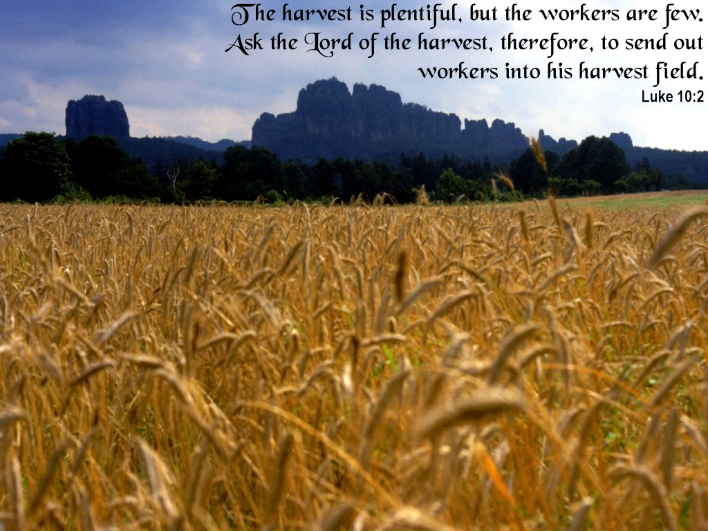 Luke 10:2 – Lord of the Harvest christian wallpaper free download. Use on PC, Mac, Android, iPhone or any device you like.