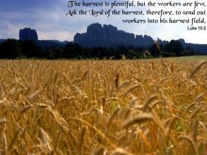 Luke 10:2 – Lord of the Harvest Wallpaper