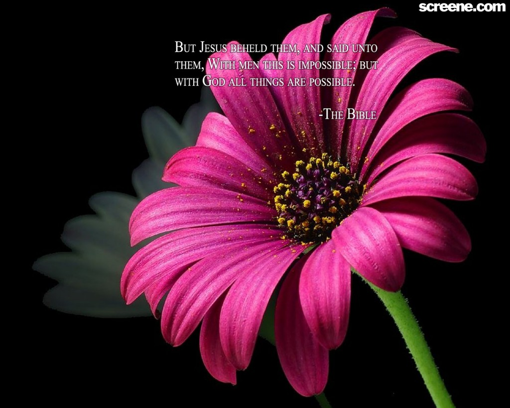 Christian Quote: All Things Are Possible Flower Background christian wallpaper free download. Use on PC, Mac, Android, iPhone or any device you like.
