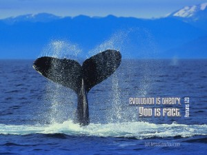 Christian Graphic: God is Fact Whale Tail Background Wallpaper