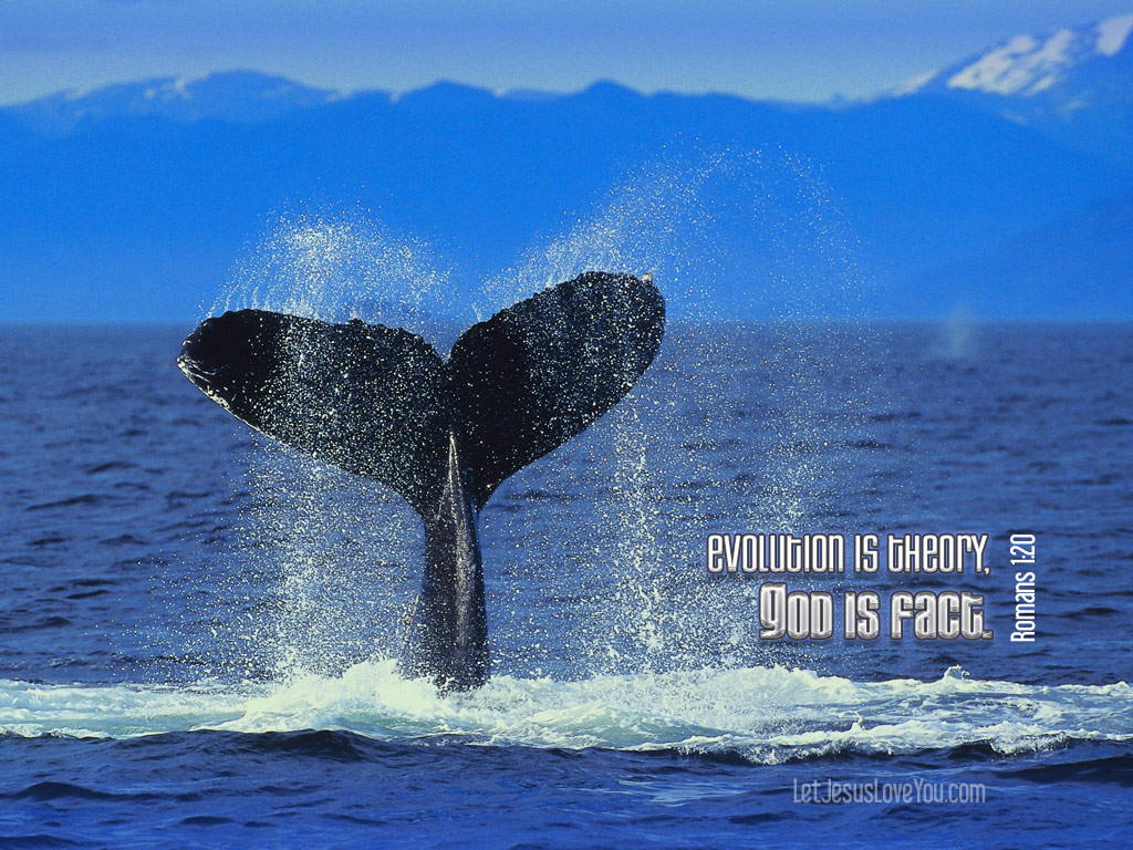 Christian Graphic: God is Fact Whale Tail Background christian wallpaper free download. Use on PC, Mac, Android, iPhone or any device you like.
