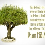 Psalm 138:7 – Tree Of Life Wallpaper Christian Background