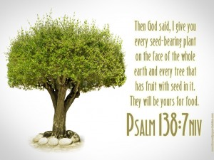 Psalm 138:7 – Tree Of Life Wallpaper