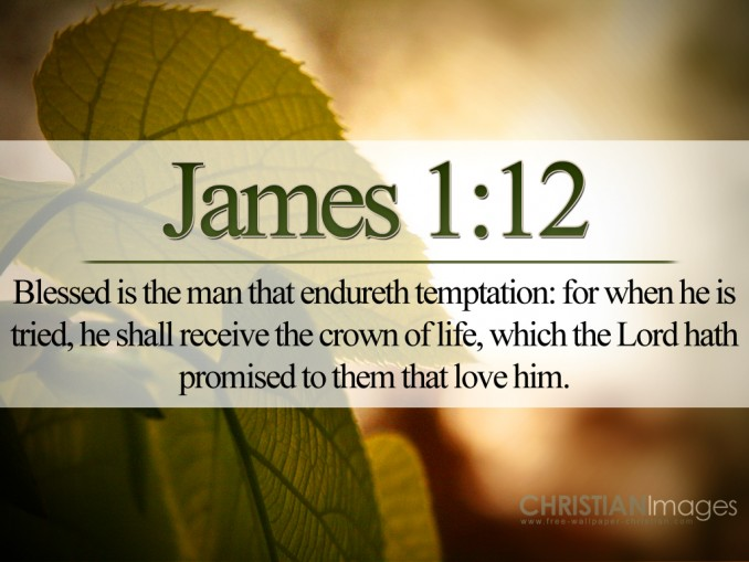 James 1:12 – Endure Temptation christian wallpaper free download. Use on PC, Mac, Android, iPhone or any device you like.