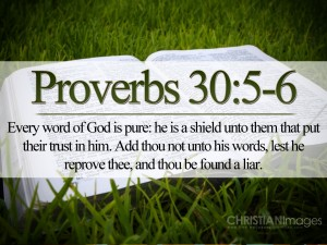 Proverbs 30:5-6 – Every Word of God is Pure Wallpaper