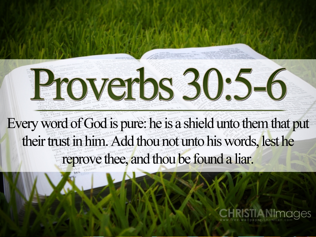 Proverbs 30:5-6 – Every Word of God is Pure christian wallpaper free download. Use on PC, Mac, Android, iPhone or any device you like.
