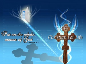 Armour Of God Wallpaper