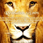 Revelation 5:5 – Lion Of The Tribe Of Judah Wallpaper Christian Background