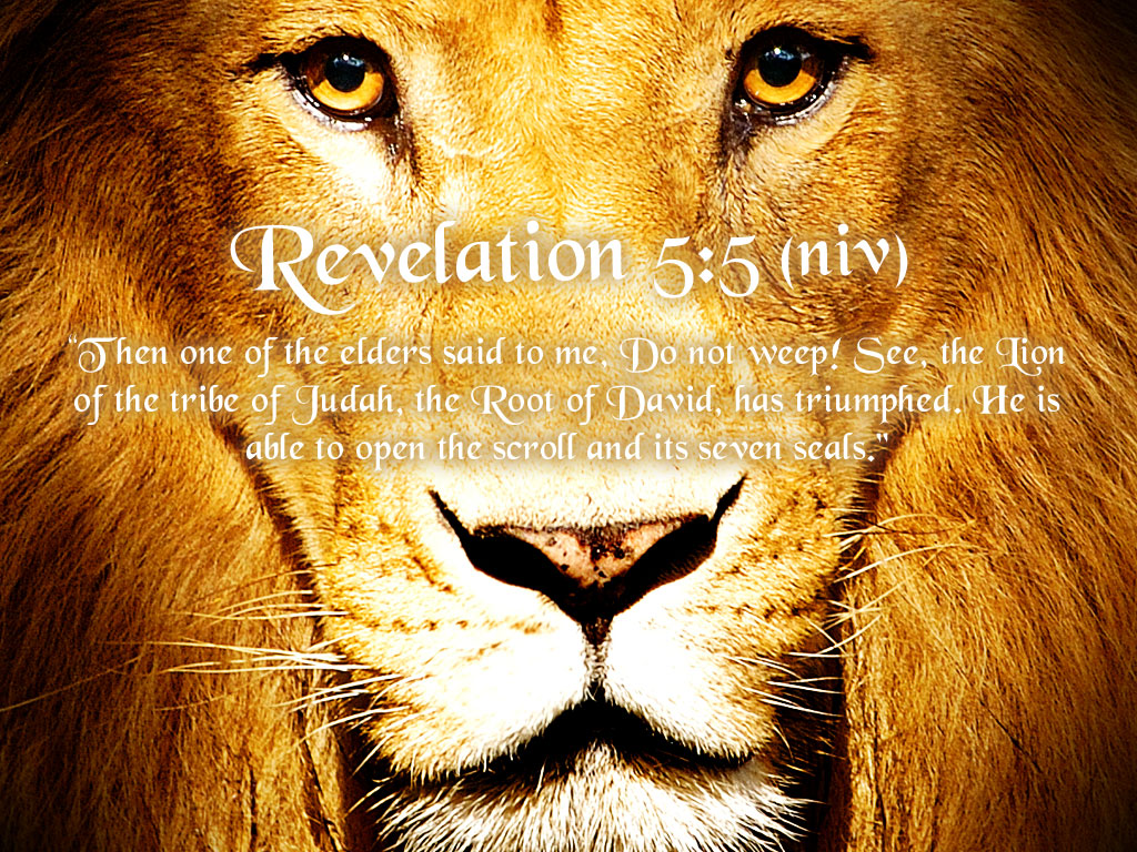 Revelation 5:5 – Lion Of The Tribe Of Judah christian wallpaper free download. Use on PC, Mac, Android, iPhone or any device you like.
