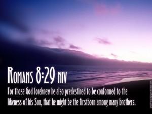 Romans 8:29 – The Son Of God Wallpaper