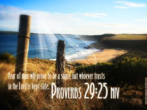 Proverbs 29:25 – Trust In The LORD Wallpaper