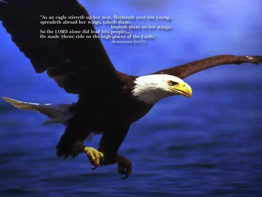 Deuteronomy 32:11-13 – Like an Eagle christian wallpaper free download. Use on PC, Mac, Android, iPhone or any device you like.