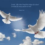 Psalm 55:6 – Like A Dove Wallpaper Christian Background