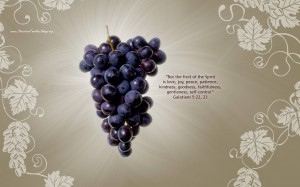 Galatians 5:22-23 – Fruits of the Holy Spirit Wallpaper