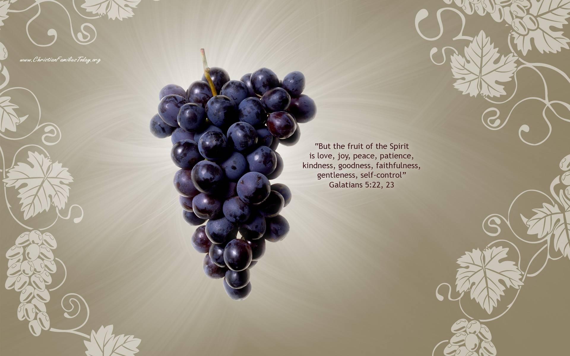 Galatians 522 23