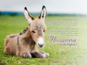 Matthew 21:7-9 – Hosanna in the Highest Heaven! Wallpaper