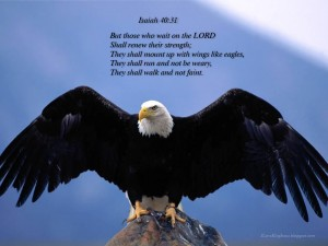 Isaiah 40:31 – Soar on Wings Wallpaper