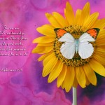 Ephesians 2:10 – God's Handiwork Wallpaper Christian Background