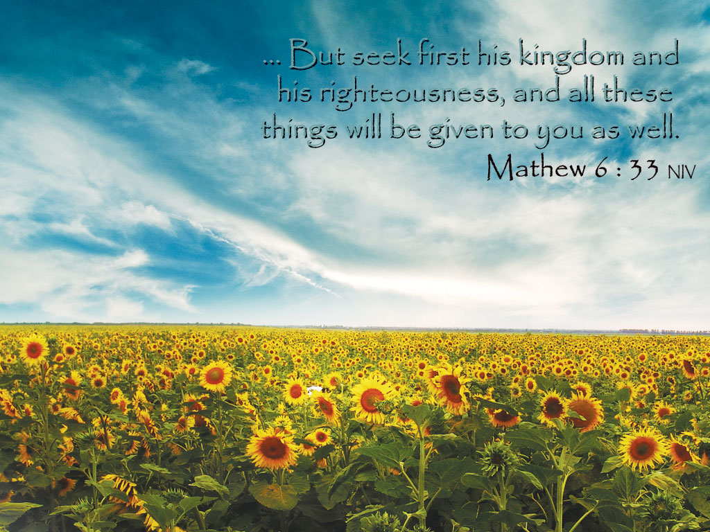Matthew 6:33 – Seek First The Kingdom of God christian wallpaper free download. Use on PC, Mac, Android, iPhone or any device you like.