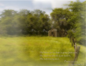 Psalm 23:2-3 – He Guides Wallpaper