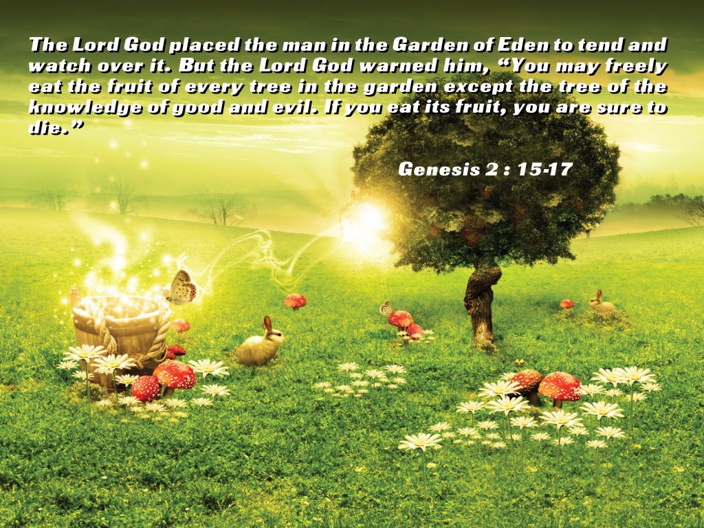 Genesis 2:15-17 – God's Command christian wallpaper free download. Use on PC, Mac, Android, iPhone or any device you like.