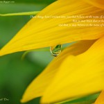 1 John 5:13 – Eternal Life Wallpaper Christian Background