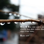 Psalm 68:9 – Abundant Showers Wallpaper Christian Background