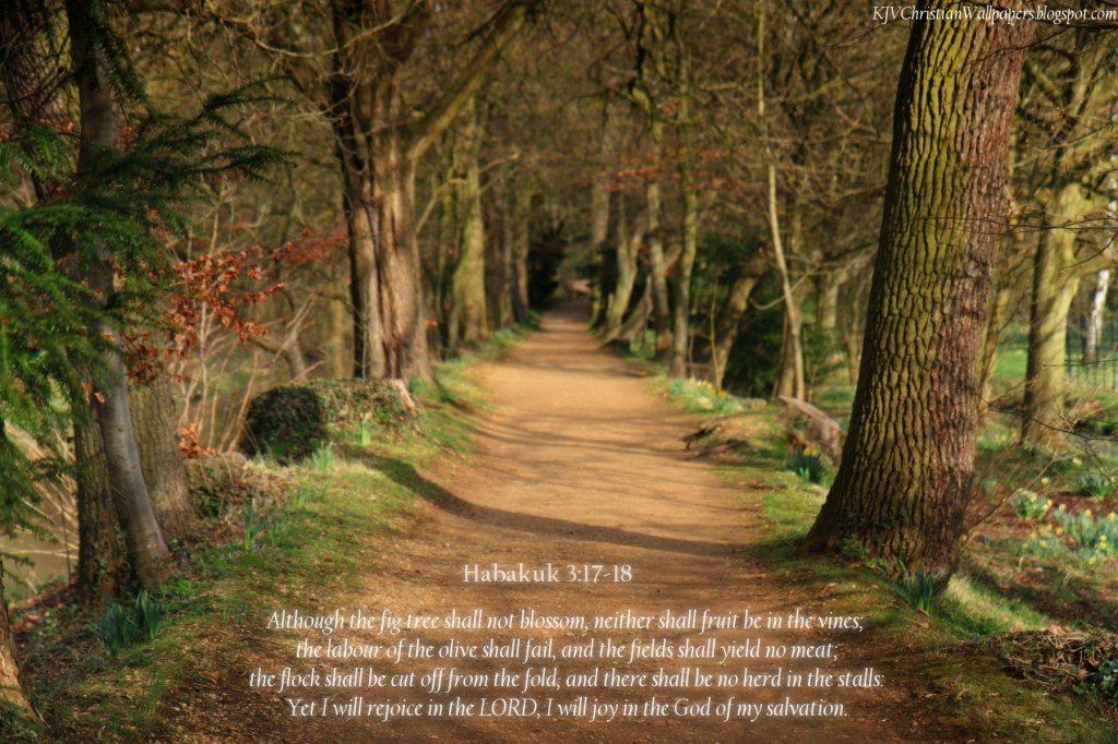 Habakkuk 3:17-18 – Joyful in God christian wallpaper free download. Use on PC, Mac, Android, iPhone or any device you like.
