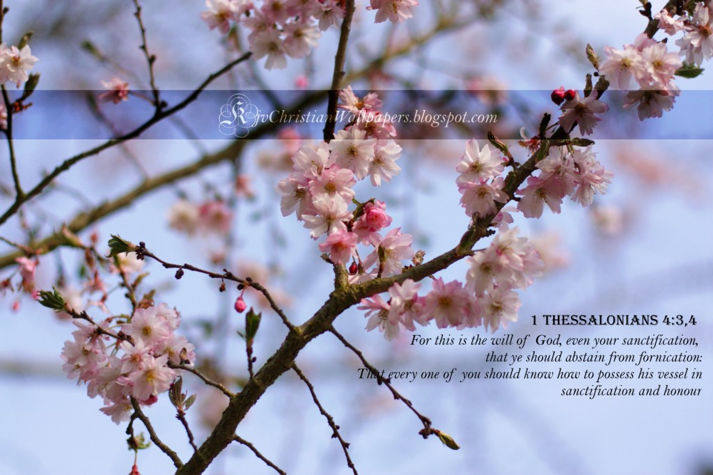 1 Thessalonians 4:3-4 – God's Will christian wallpaper free download. Use on PC, Mac, Android, iPhone or any device you like.