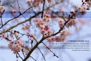 1 Thessalonians 4:3-4 – God's Will Wallpaper