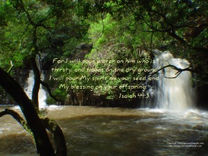 Isaiah 44:3 – Pour of Blessings Wallpaper