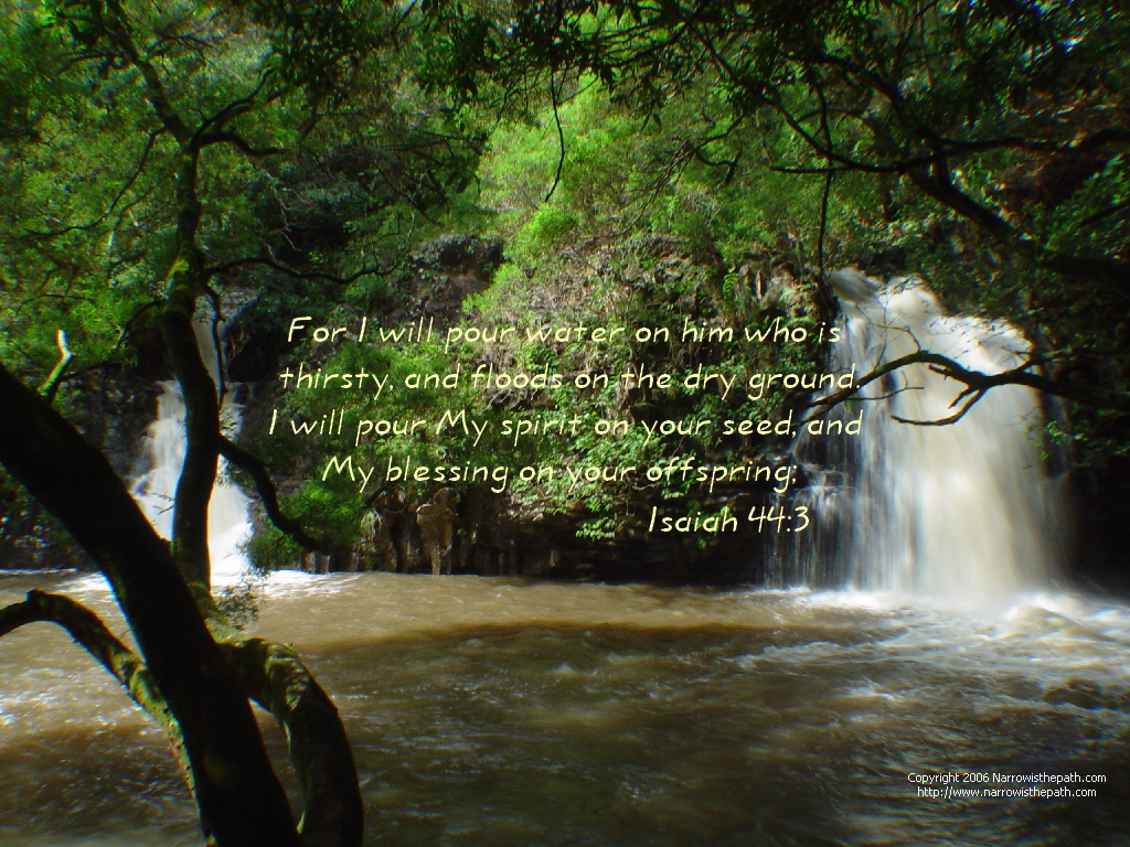 Isaiah 44:3 – Pour of Blessings christian wallpaper free download. Use on PC, Mac, Android, iPhone or any device you like.
