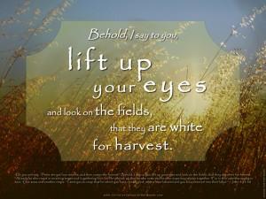 John 4:35-38 – Lift Up Your Eyes Wallpaper
