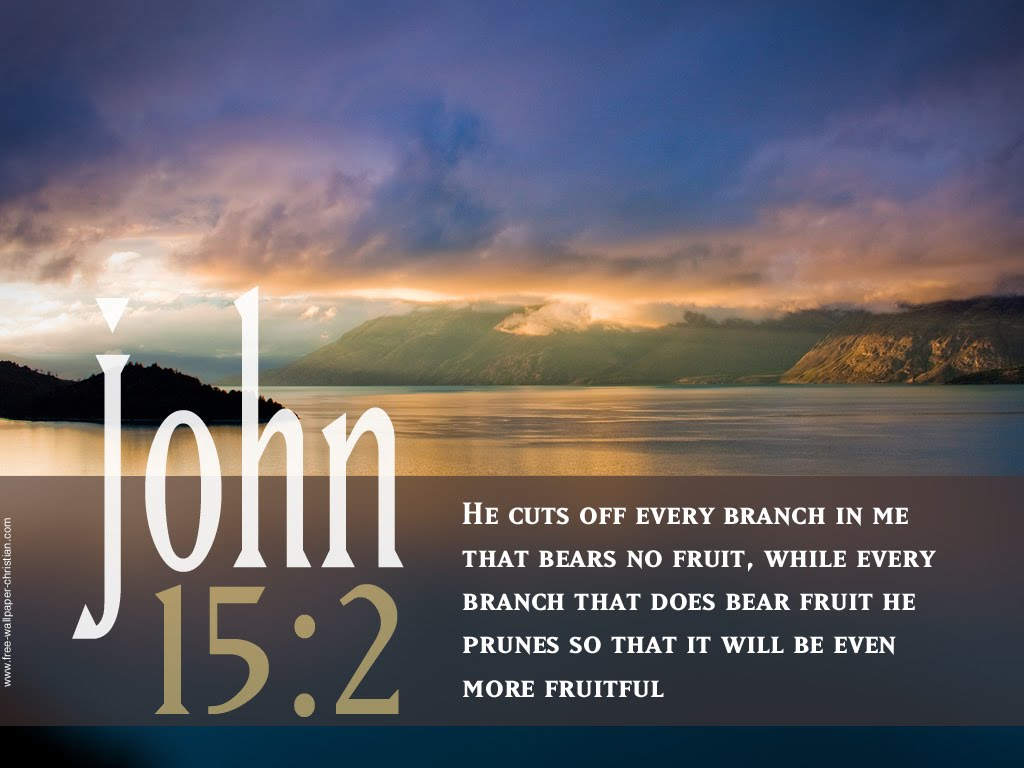 John 15:2 – Fruitfulness christian wallpaper free download. Use on PC, Mac, Android, iPhone or any device you like.