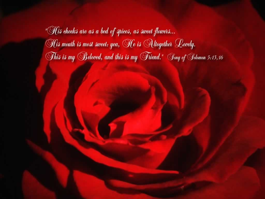Song of Songs 5:13,16 – My Beloved and Friend Papel de Parede Imagem