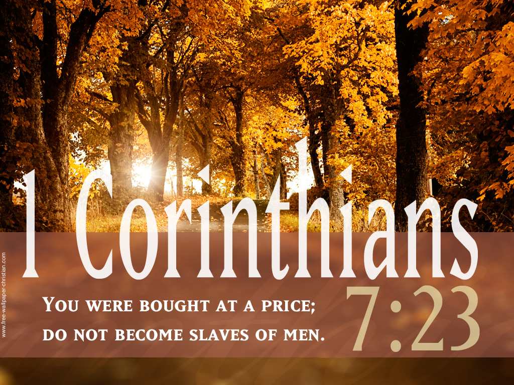 1 Corinthians 7:23 – Men Are Not Slaves christian wallpaper free download. Use on PC, Mac, Android, iPhone or any device you like.