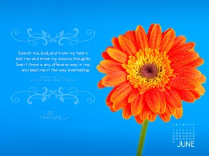Psalm 139:23-24 – Search Me Oh God Wallpaper