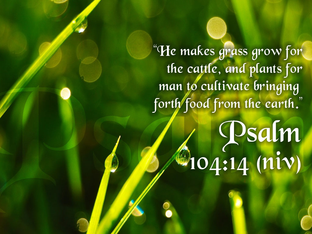 Psalm 104:14 – Food From The Earth christian wallpaper free download. Use on PC, Mac, Android, iPhone or any device you like.