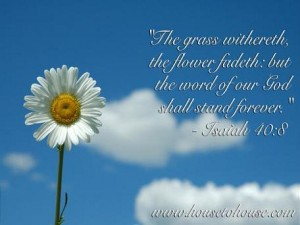 Isaiah 40:8 – Word Of Our God Wallpaper