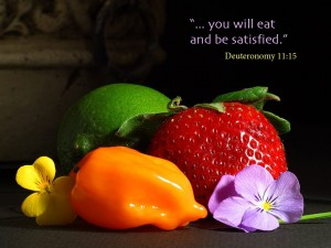 Deuteronomy 11:15 – Always Be Satiesfied Wallpaper