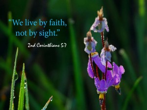 2 Corinthians 5:7 – Live By Faith Wallpaper