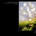 Psalm 110:3 – Dew Of Your Youth Wallpaper Christian Background