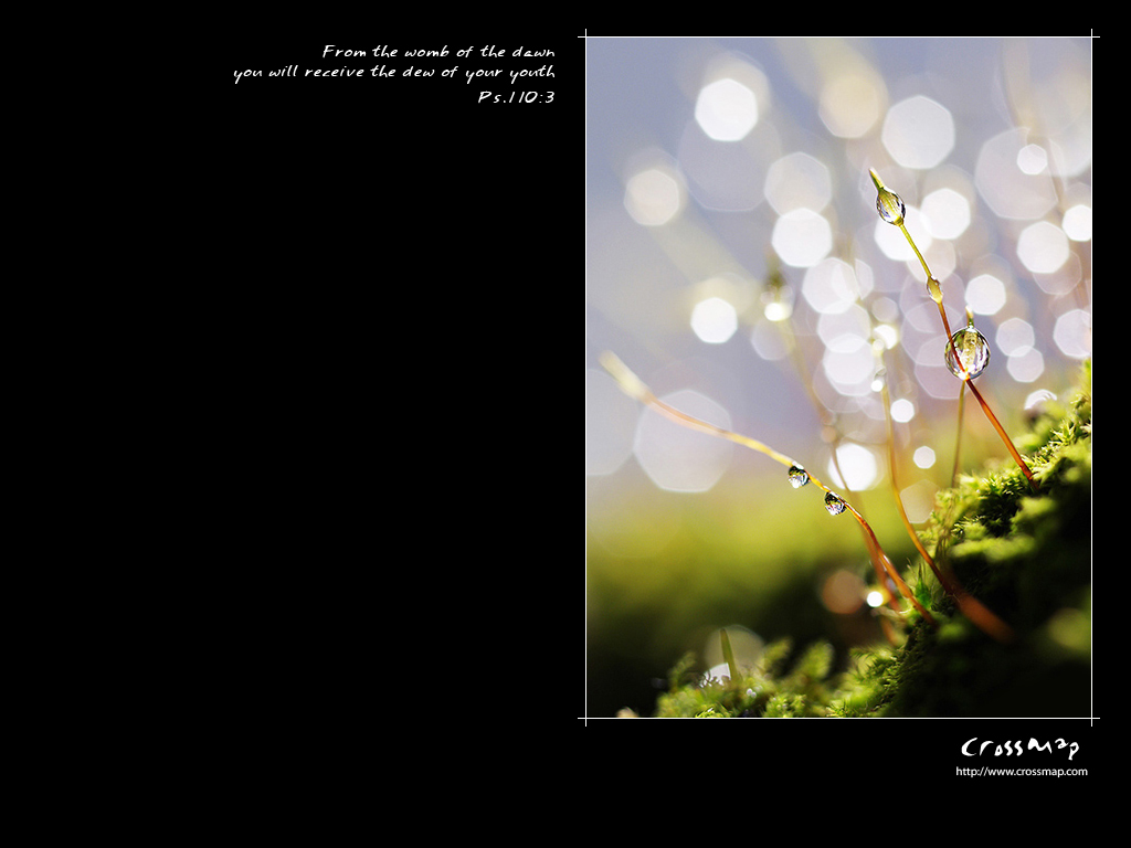 Psalm 110:3 – Dew Of Your Youth christian wallpaper free download. Use on PC, Mac, Android, iPhone or any device you like.