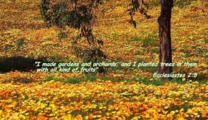 Ecclesiastes 2:5 – Gardens Wallpaper